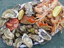 Фермерские продукты и био/органик, Франция - фото 5