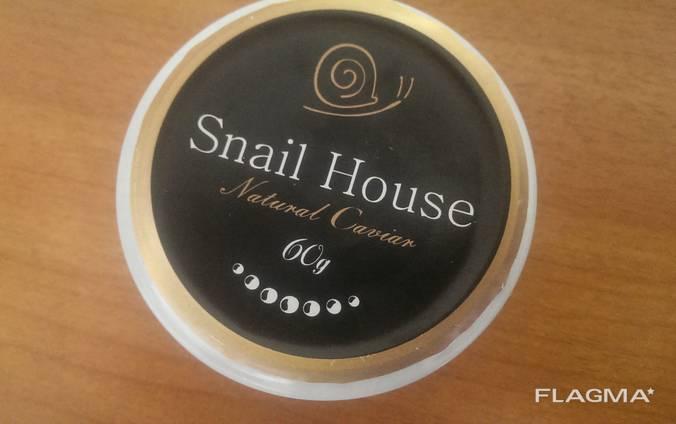 Natural caviar Mediterranean snails