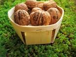 Paniers en placage de fruits - photo 3