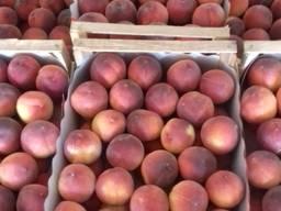 Peach fresh Macedonia